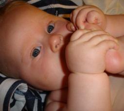 bebis 6 månader